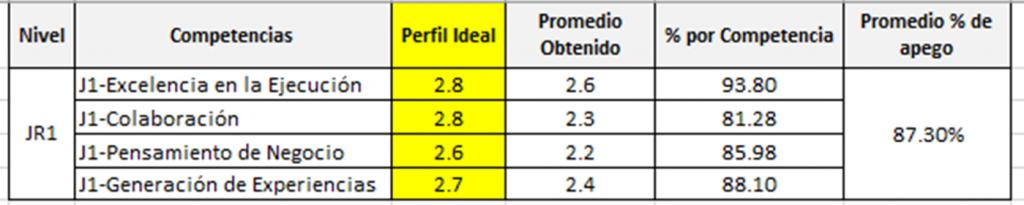 perfil ideal por competencias laborales para atracción de talento afín